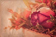 Retro Rose Royalty Free Stock Images