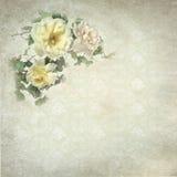 Retro roses. Retro vintage romantic background with roses Stock Image