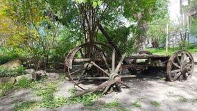 Retro ruïnewiel in tuin stock afbeeldingen