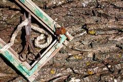 Retro- Sachen auf Barkenhintergrund Stockbilder