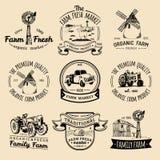 Retro- Satz des Vektors neue Firmenzeichen des Bauernhofes Weinleseaufkleber mit der Hand skizzierten landwirtschaftliche Ausrüst Stockfotografie