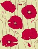 retro seamless för blom- modellpopies Royaltyfri Bild