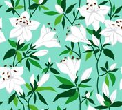 Retro  seamless floral background Royalty Free Stock Photography