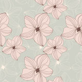 Retro seamless pattern with pink orchid flowers on beige background Stock Photography