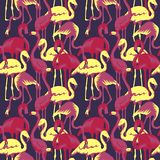 Retro Seamless Pattern with Tropical Birds Flamingo Stock Photos