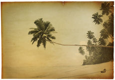 Retro Seaside with Palm Tree Photo Royalty Free Stock Photo