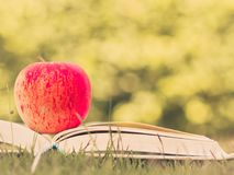 Retro and selective focus of red apple put on open book . royalty free stock image