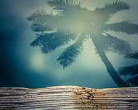 Retro Shadow Of A Palm Tree On Water Stock Photos