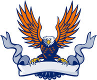 Retro skalliga Eagle Swooping Spread Wings Scroll Arkivfoton