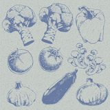 Retro sketch vegetables pattern. Seamless texture wrapping paper of food or vegetables Stock Photo