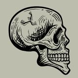 Retro skull illustration Royalty Free Stock Photos