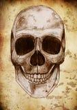 Retro skull and paint Royalty Free Stock Photos