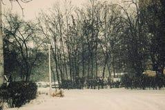 Retro snowing  landscape in winter Stock Image