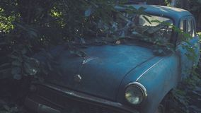 Retro Soviet blue car overgrown with grass. Classic car rusting in a farmer`s field stock photo