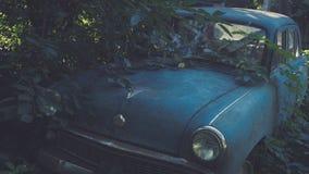 Retro sovjetblåttbil som är bevuxen med gräs Klassisk bil som rostar i ett fält för bonde` s arkivfoto