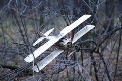 Retro- Spielzeugflugzeug ist in den Herbstniederlassungen fest Stockbilder