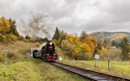 Retro steam train approaches mountains Stock Photos