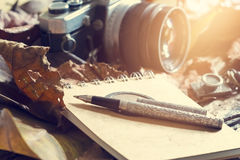 Retro- Stift auf altem Notizblock und Kamera auf trockenem Blatt im Dschungelhintergrund Stockfoto
