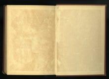 Retro stile incornici l'ornamento floreale alle pagine di vecchi libri Immagine Stock Libera da Diritti