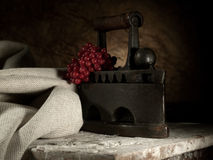 Retro still life Royalty Free Stock Photography