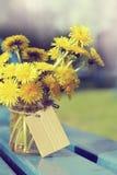 Retro still life with yellow dandelions Stock Image
