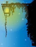 Retro streetlamp. Streetlamp with ivy in the night Stock Image