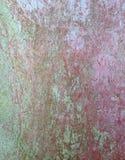 Retro struttura d'annata della parete di lerciume, fondo di vettore g astratto illustrazione vettoriale