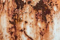 Retro struttura o fondo arrugginita del metallo di lerciume Fotografia Stock