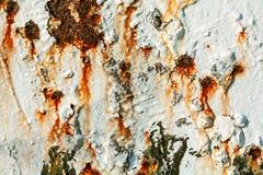 Retro struttura o fondo arrugginita del metallo di lerciume Immagini Stock