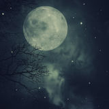 Retro style artwork with cloudy skies. Full moon and old tree Royalty Free Stock Image