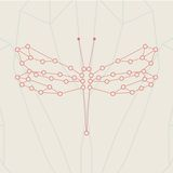 Retro style, dragonfly illustration. Royalty Free Stock Photography