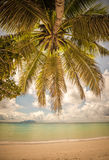 Retro style image of tropical island beach Stock Images