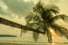 Retro style image of tropical island beach Royalty Free Stock Photo