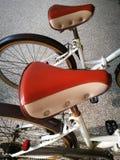 Retro style leather bike seats Royalty Free Stock Photo