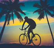Retro Style Palms And Cyclist Royalty Free Stock Photos