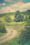 Retro style photo of a pastoral rural landscape with gravel road winding past lily pond towards lush green rolling hills royalty free stock photography
