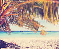 Retro style picture of womans legs on tropical beach. Stock Photography