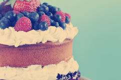 Retro style sponge Layer Cake with copy space. Royalty Free Stock Photos