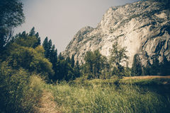 Retro Style Yosemite Stock Photos