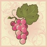 Retro-styled grape bunch Royalty Free Stock Photography