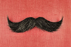 Retro styled image of a black curly moustache Royalty Free Stock Photos