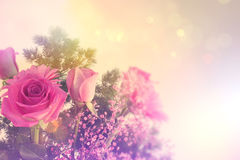 Retro styled image of flowers Royalty Free Stock Image