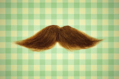 Retro styled image of a moustache in front of green wallpaper Royalty Free Stock Images