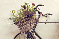 Retro styled image of an old bicycle with basket Royalty Free Stock Image