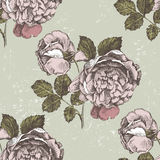 Retro-styled roses ornament Royalty Free Stock Images