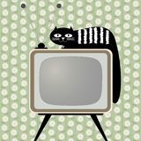 Retro-styled television receiver with cat. Retro-styled television receiver with black cat Royalty Free Stock Images