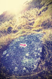 Retro stylized trail arrow sign against sunset with lens flare. Stock Photos