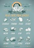 Retro stylowy szablon dla prawdziwego owocowych soków menu Fotografia Stock