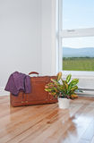 Retro suitcase and bright plant in empty room Stock Images