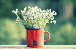 Retro summer background with forget me not flowers Royalty Free Stock Photography